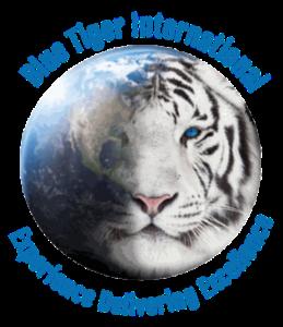 Blue Tiger International
